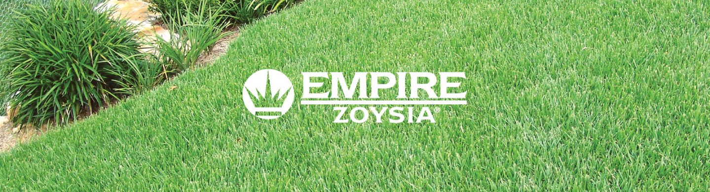 Empire Zoysia Turf. Find your local turf supplier