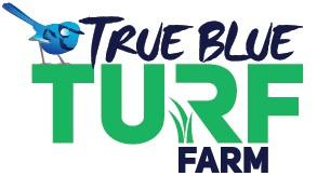 https://myhometurf.com.au/wp-content/uploads/2019/05/True-Blue-myhomeTURF-logo.jpg